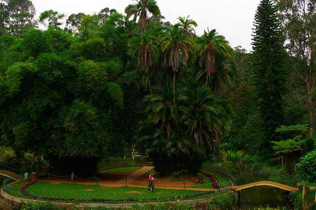 Hill-Station-Holiday-Places-in-Tamil-Nadu-Coonoor