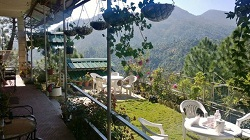 Hotels in Mukteshwar Club 10 Pine Lodge