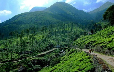 Top-Hill-Stations-in-Kerala-Wayanad